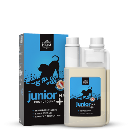 Chondroline Junior + HA 500ml