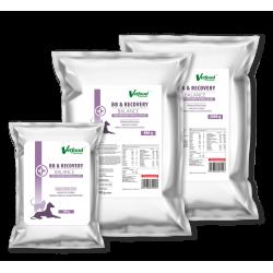 Vetfood BB & Recovery Balance 20 g