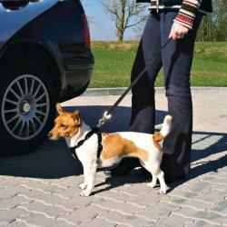 Trixie Szelki samochodowe dla psa M [1291]