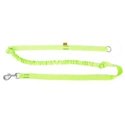 Dingo Smycz do biegania - taśma z amortyzatorem 170cm z rączką zielona